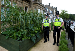 incredible-edible-policemen